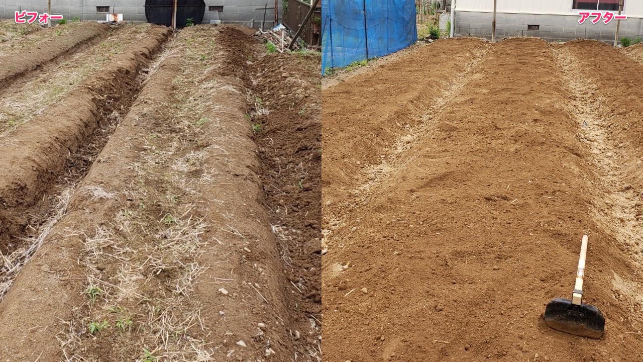 まとめ:耕す前と後の比較と植え込み準備完了