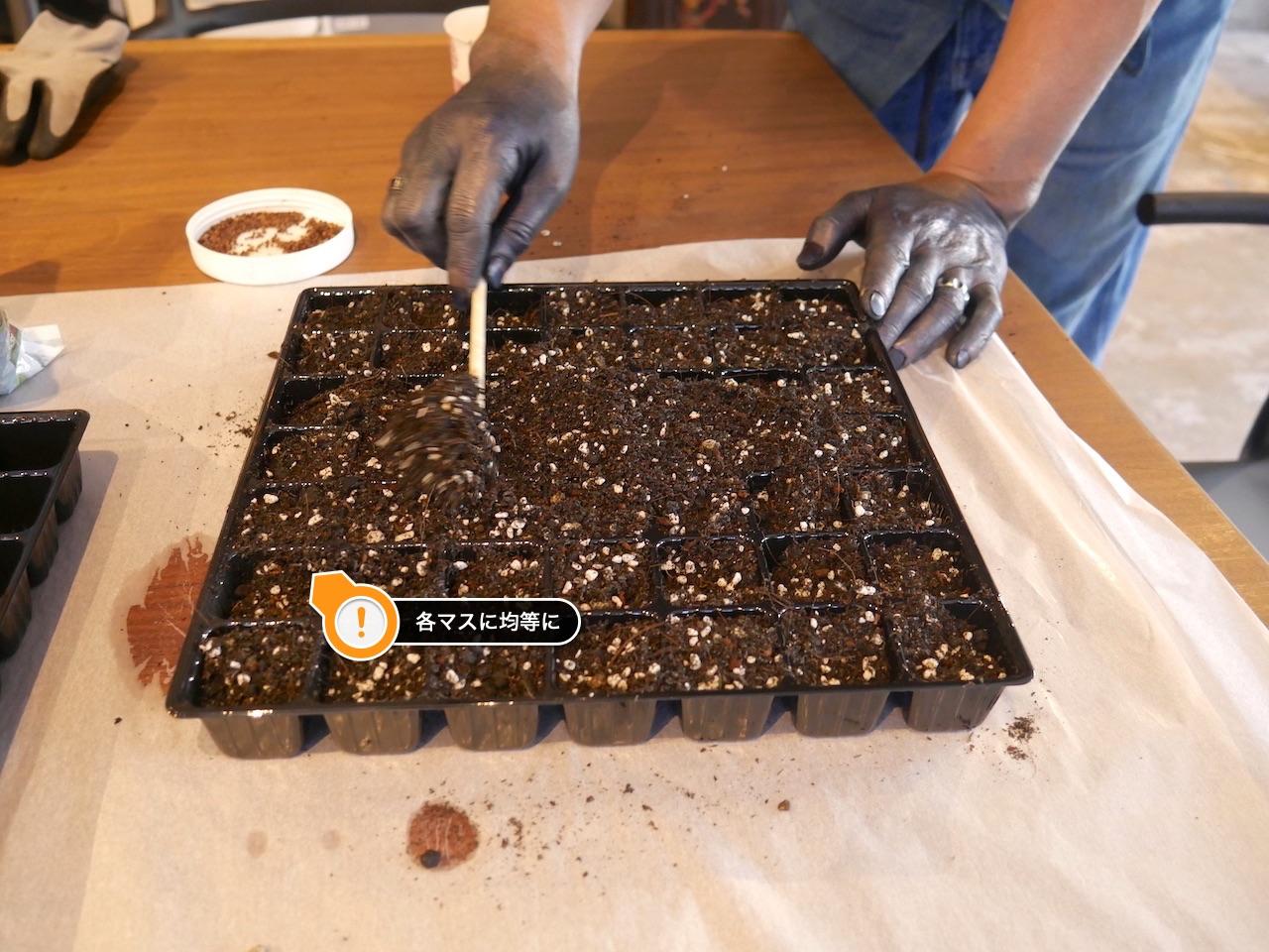 各マスに均等に土を入れよう:藍の種まき