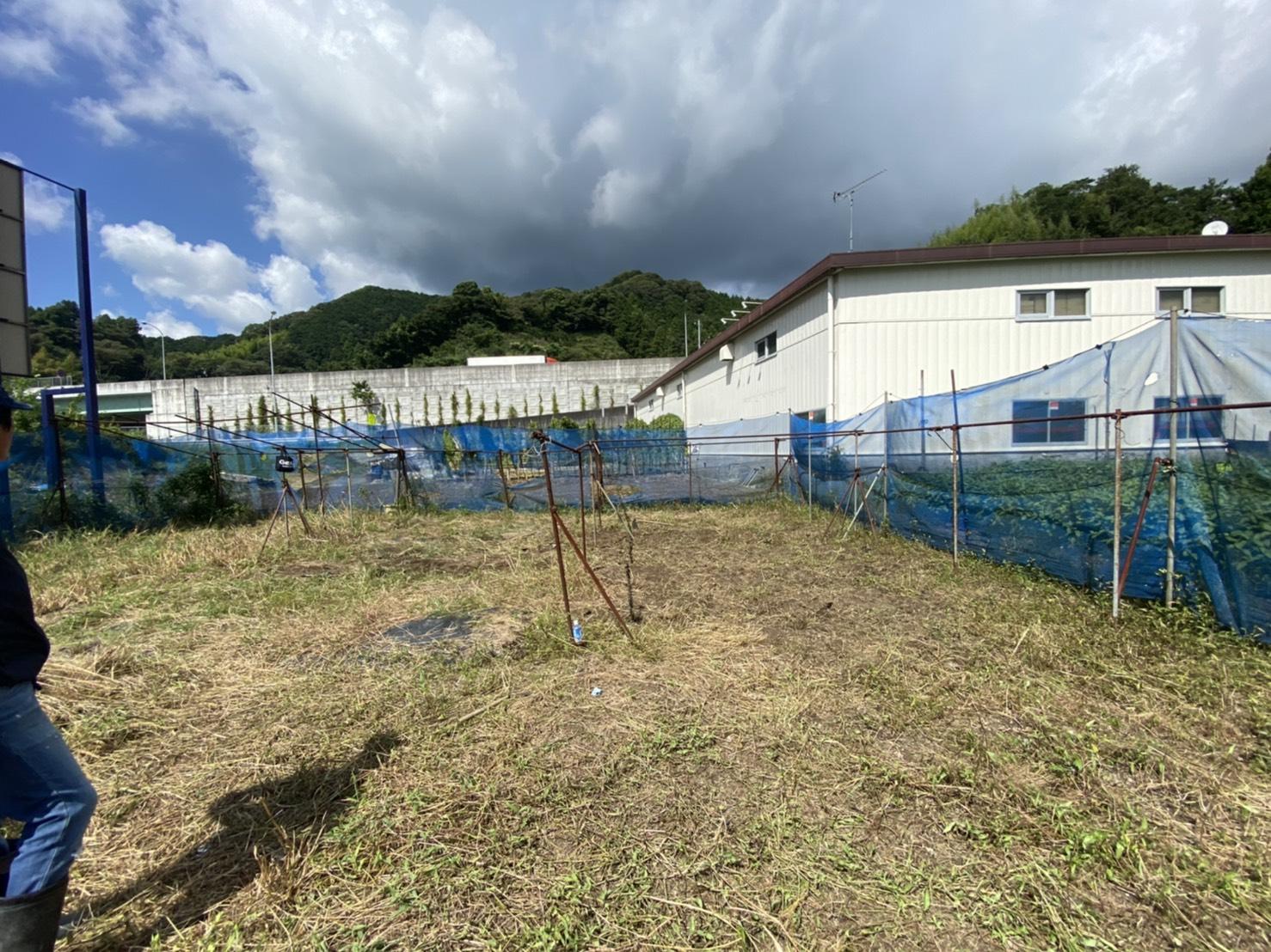 静岡藍:蒅づくりのスペース